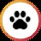 Miscellaneous Pet Services