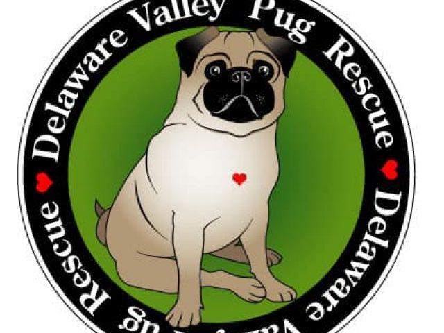 Delaware Valley Pug Rescue