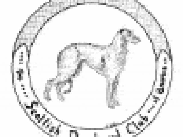 Scottish Deerhound Club of America Rescue & Placement