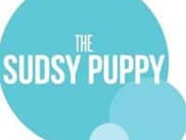 The Sudsy Puppy