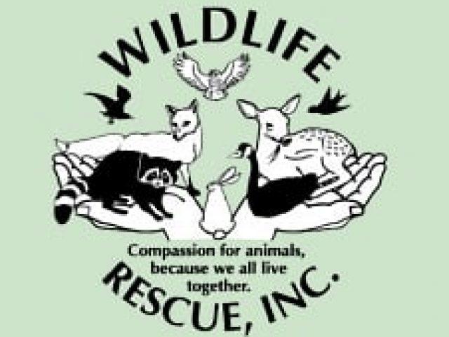 Wildlife Rescue, Inc.