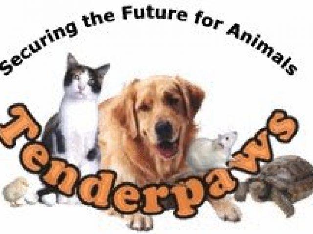 Tenderpaws,LLC Doggie Daycare